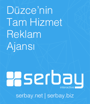 Serbay Interactive Blog